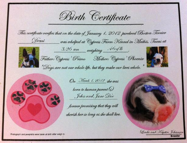 Free sample birth certificate choice image certificate design free sample birth certificate images certificate design and template sample birth certificate for pets images certificate yadclub Image collections